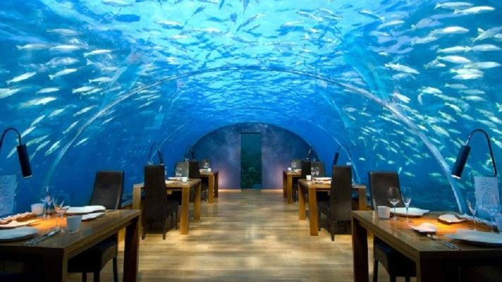 restaurant_caro6